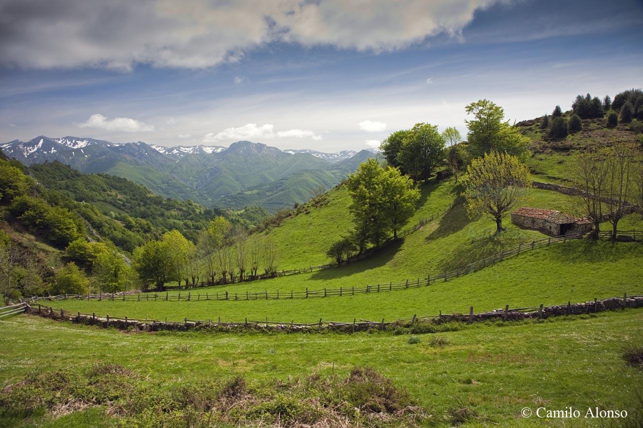 Valle de Cardeo, Aller, Asturias.